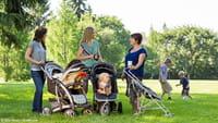 Cunas y cochecitos causan lesiones en bebés