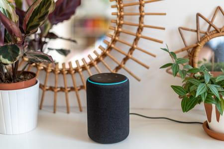 Cómo activar los modos secretos de Alexa