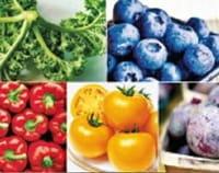 ¿Podrían los niveles crecientes de dióxido de carbono dejar a los alimentos sin ciertos nutrientes?
