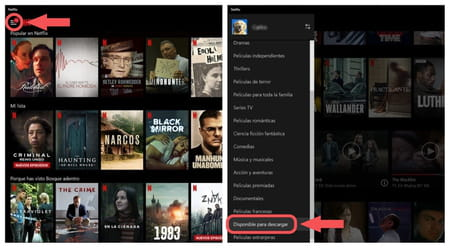 Netflix descargar contenido