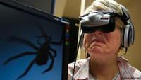 Arañas, fobias y errores de percepción