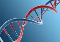 Demuestran alteraciones en el ADN mitocondrial de pacientes psiquiátricos