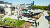 Silicon Valley busca talento, no títulos
