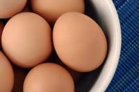 La ingesta de huevos no estaría relacionada con altos niveles de colesterol en adolescentes
