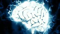 Chips en el cerebro para recordar mejor