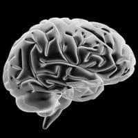 Marcapasos cerebral, un nuevo enfoque contra Alzheimer