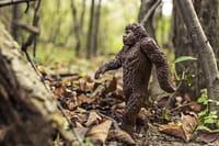 El sistema inmune: la gran herencia neandertal