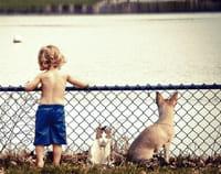 Por qué es bueno para un niño tener un perro