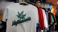 ¿Cuánto daña la marihuana al organismo humano?