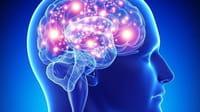 Tener los niveles de colesterol bajo control también resulta saludable para el cerebro