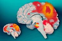 El déficit de memoria de los mayores podría revertirse