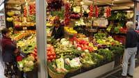 Los antioxidantes pueden propagar el cáncer