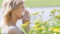 Una 'app' chilena para huir del polen