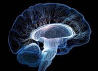 Nuevas aplicaciones detectan ataques de epilepsia y mejoran el tratamiento del ictus