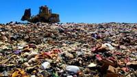 Una 'app' para reciclar basura en México