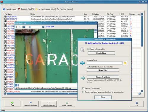 duplicate cleaner pro full español gratis