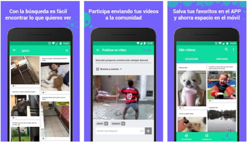 Descargar Vídeos Para Whatsapp Para Android Gratis última Versión En Español En Ccm Ccm
