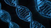 La edición genética, descubrimiento del año