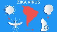 Aumentan las solicitudes de aborto por el virus zika