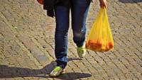 La bolsa sin plástico, idea de chilenos