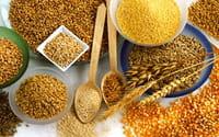 Los expertos recomiendan tomar al menos seis raciones de cereales al día