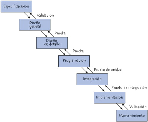 ciclo de vida en cascada