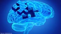 Las mujeres tienen el cerebro más activo
