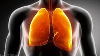 El peligro del dióxido de titanio