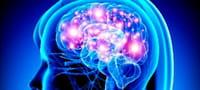 Identifican mutaciones genéticas que desempeñan un papel clave en la epilepsia infantil
