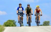 Una proteína promovida por el ejercicio físico mejora la salud del cerebro