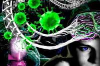 La terapia génica cambia la vida a seis niños con dos enfermedades raras
